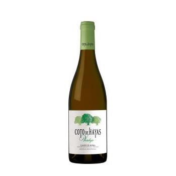 V B CAMPO DE BORJA COTO DE HAY 2019 0.75L.