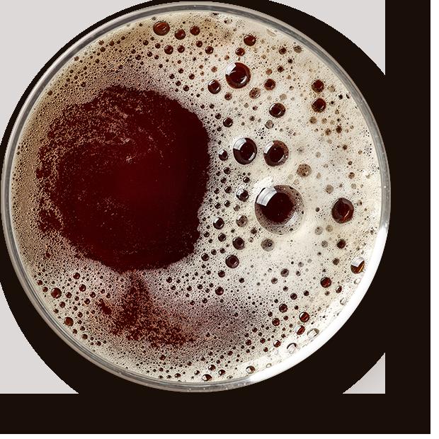https://alregi.es/wp-content/uploads/2017/05/beer_transparent.png